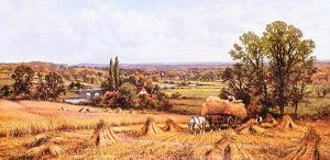 AP--AA_Glendening_1900-12--wheat_field.jpg